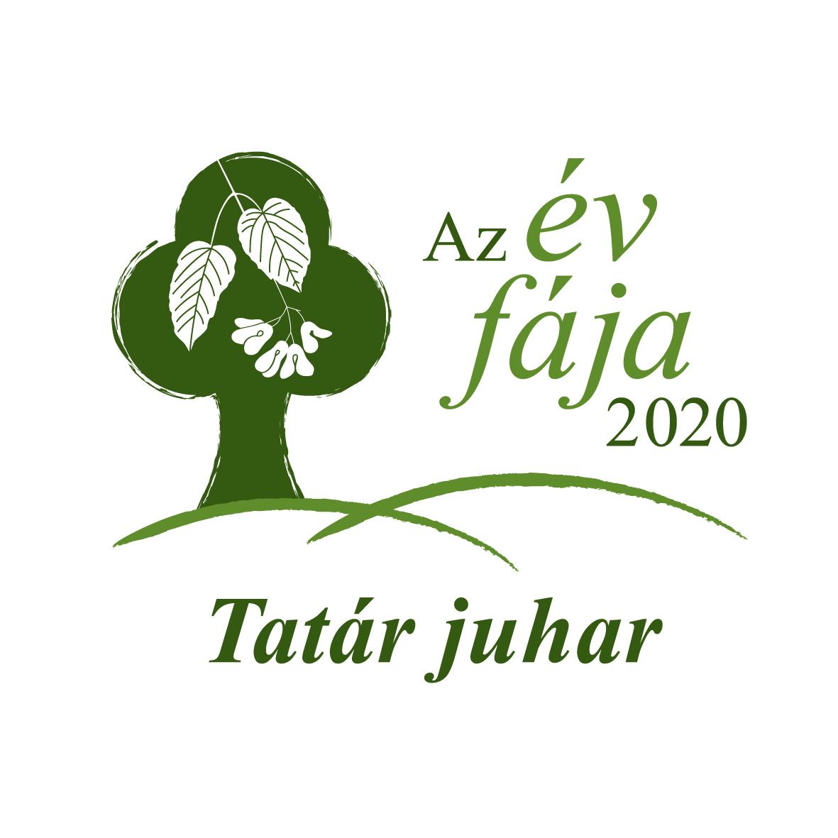 Az Év fája 2020