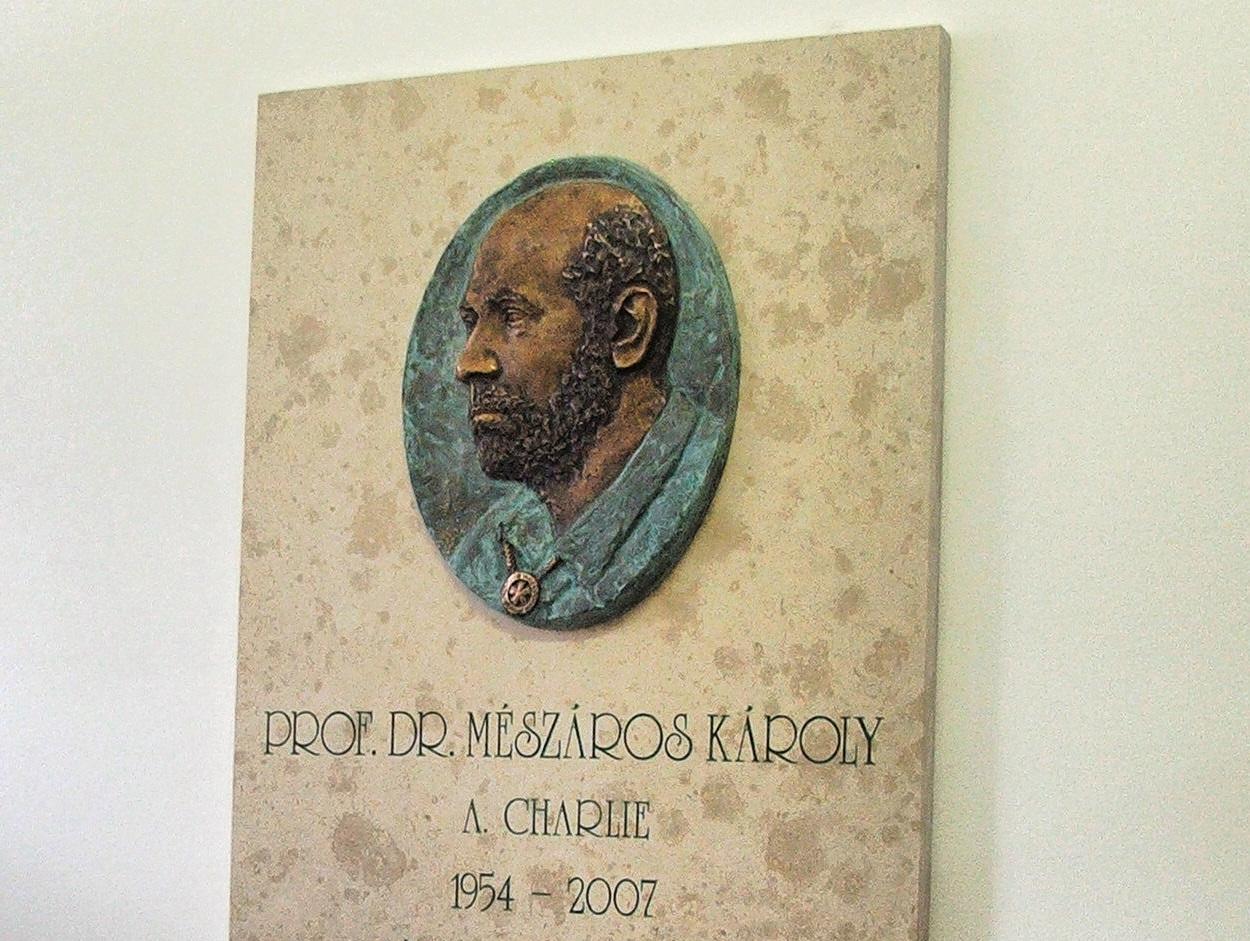 Felhívás prof. dr. Mészáros Károly szobra felállításának érdekében