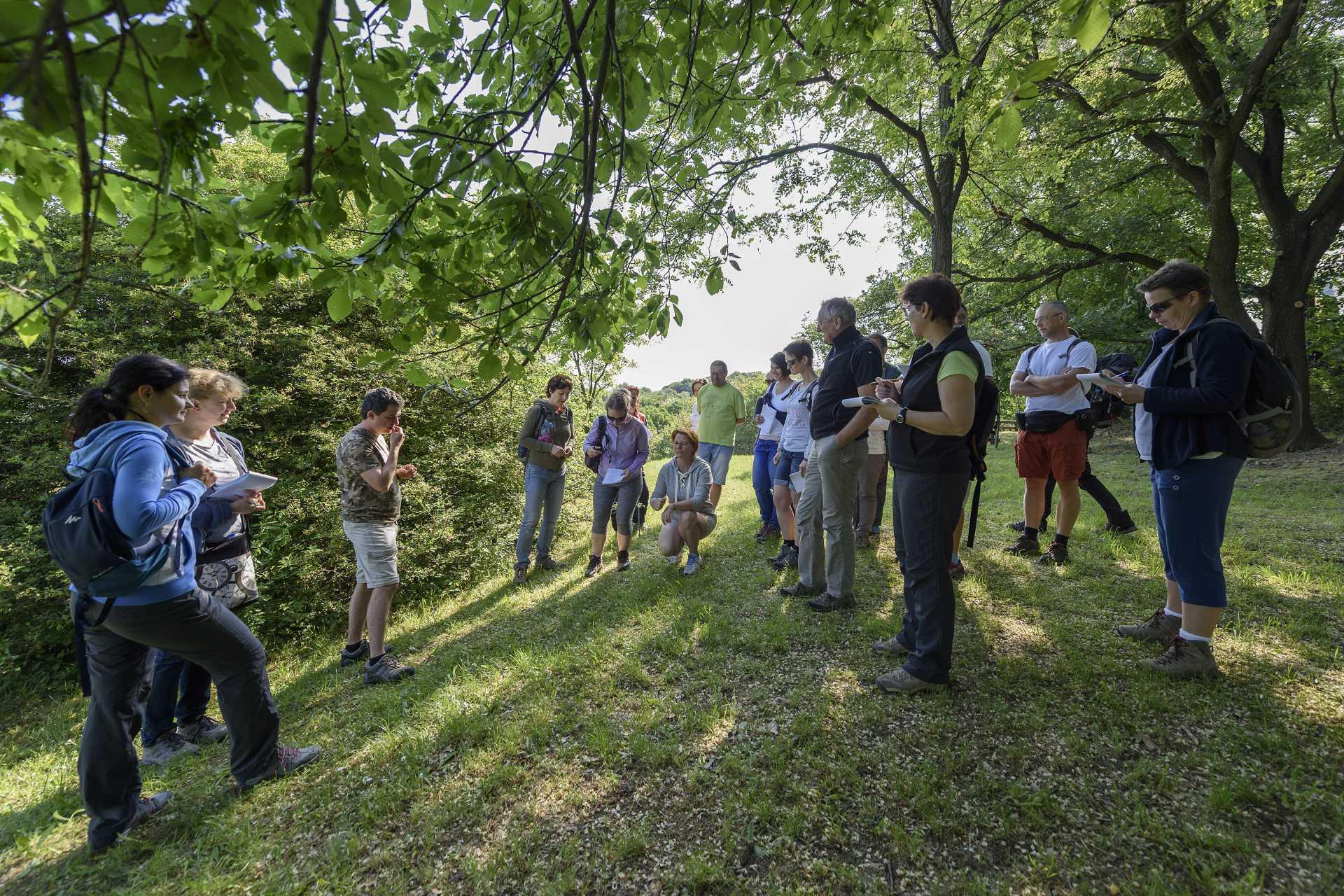 Ősszel újra indul a pedagógusoknak szóló gyalogos vándortábor-vezető továbbképzés