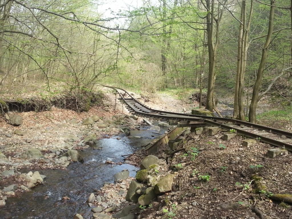 Az Agrárminisztérium nem támogatja a Csarna-völgyi kisvasúttal kapcsolatos építési beruházást