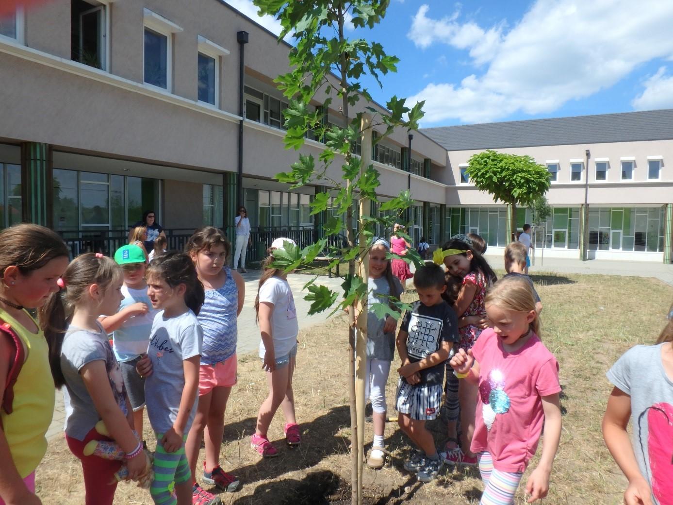 Iskolaszépítési program az ÉSZAKERDŐ Zrt-vel - közeleg az Erdők Hete