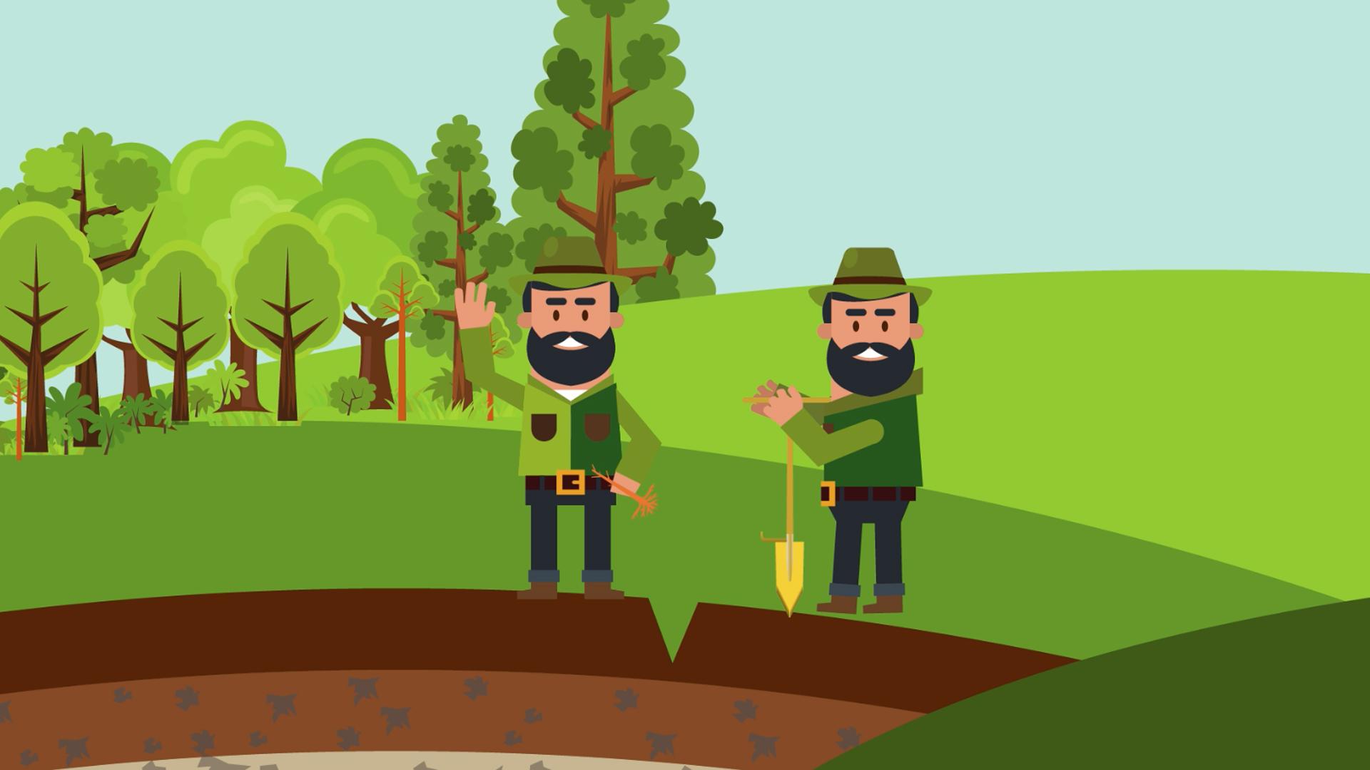 Animációs tananyagsegédlet a jövő erdészei számára