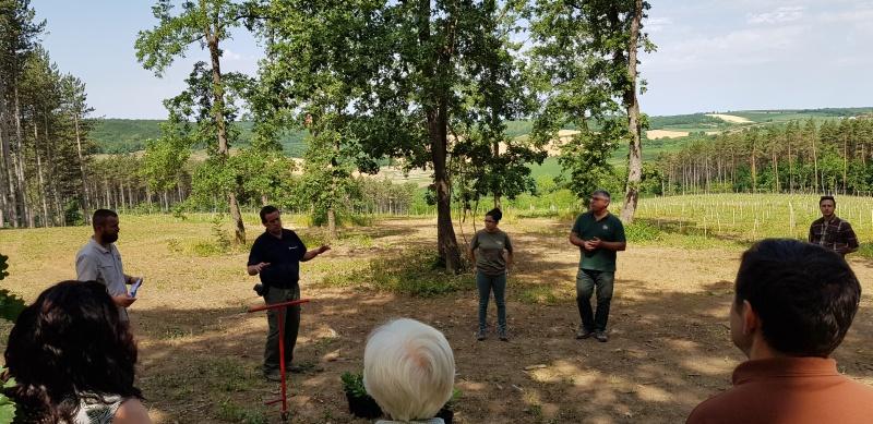A Gyulaj Zrt. génmegőrzési tevékenységét tanulmányozta az Erdőművelési Szakosztály