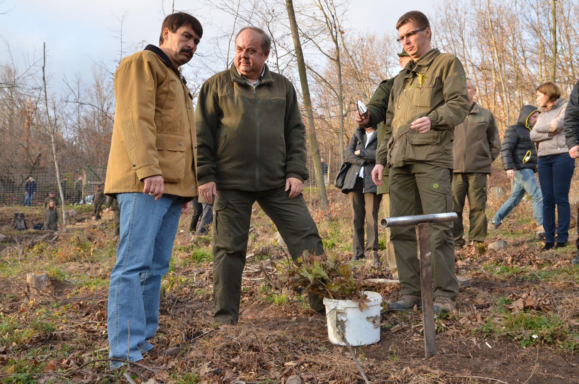 400 hektár erdő ültetése kezdődött meg a tavalyi jégkár után - képgaléria!