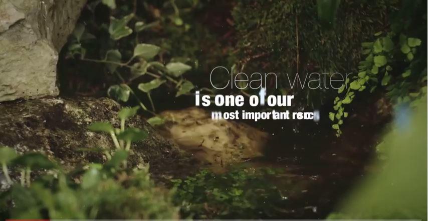 Elérhető magyarul az Erdők Nemzetközi Napjának hivatalos FAO kisfilmje!