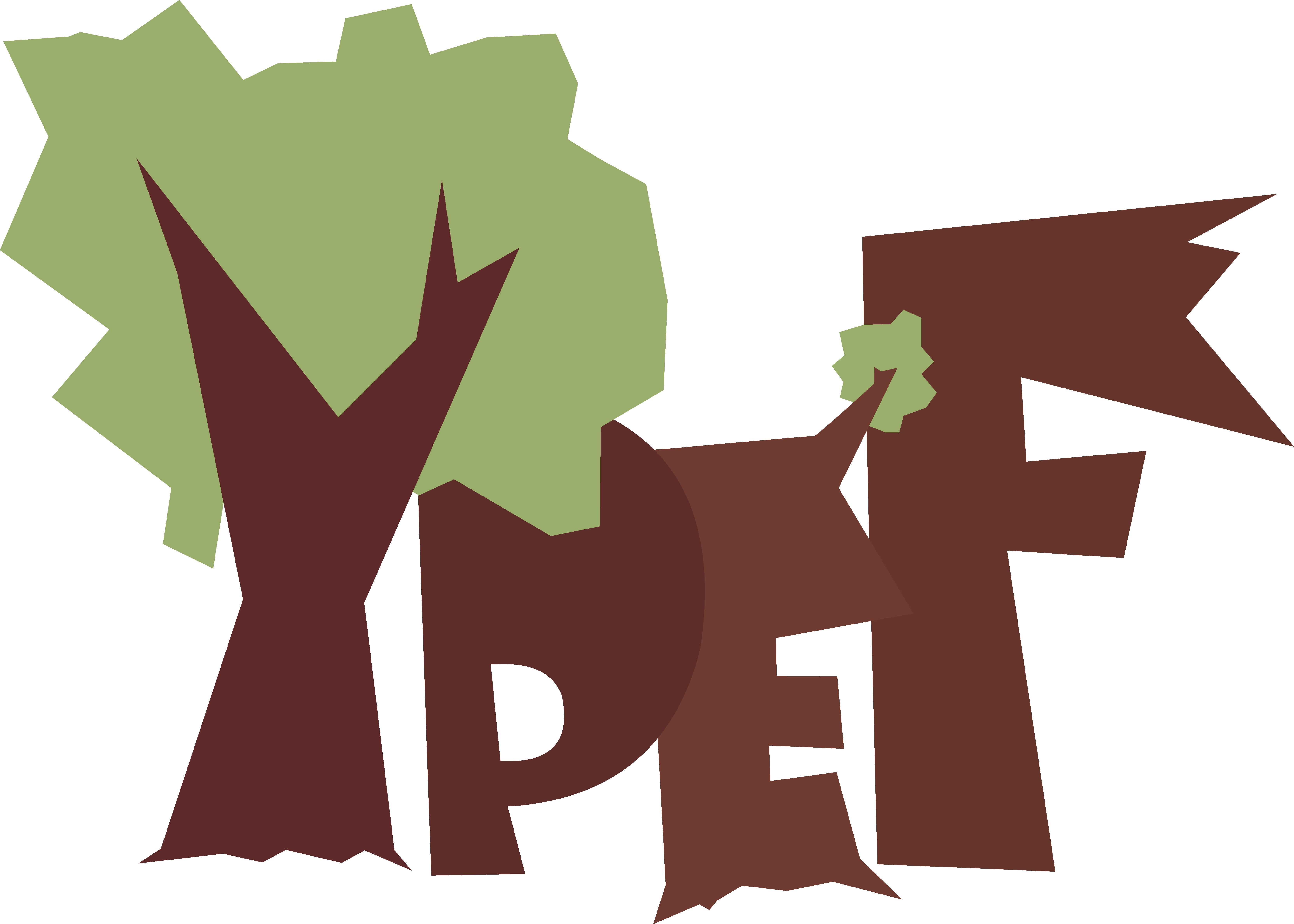 Fiatalok Az Európai Erdőkben – YPEF 2017