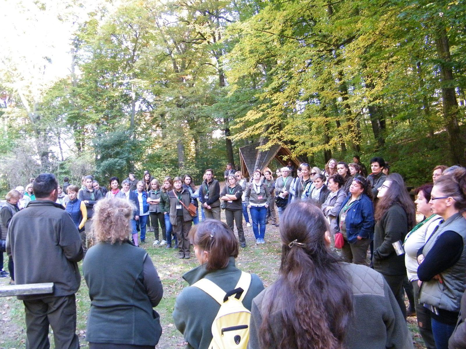 A Bükkel ismerkedtek a hazai erdésznők
