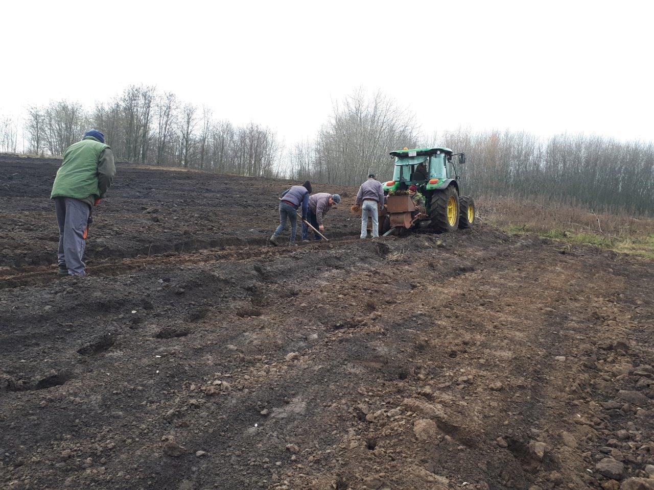Közel hat hektár új erdőt telepített az EGERERDŐ Zrt.