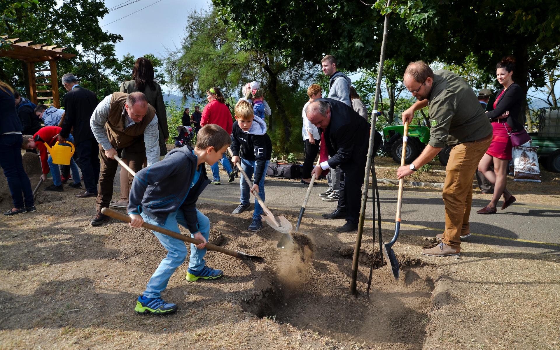 Kizöldülnek a települések az ország legnagyobb fásítási programjának köszönhetően