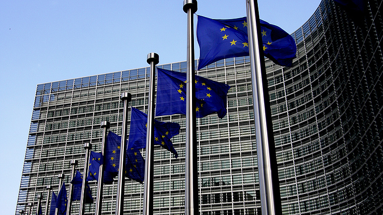 Az uniós klímarendelethez hasonló biodiverzitási jogszabály megalkotását javasolja az EP