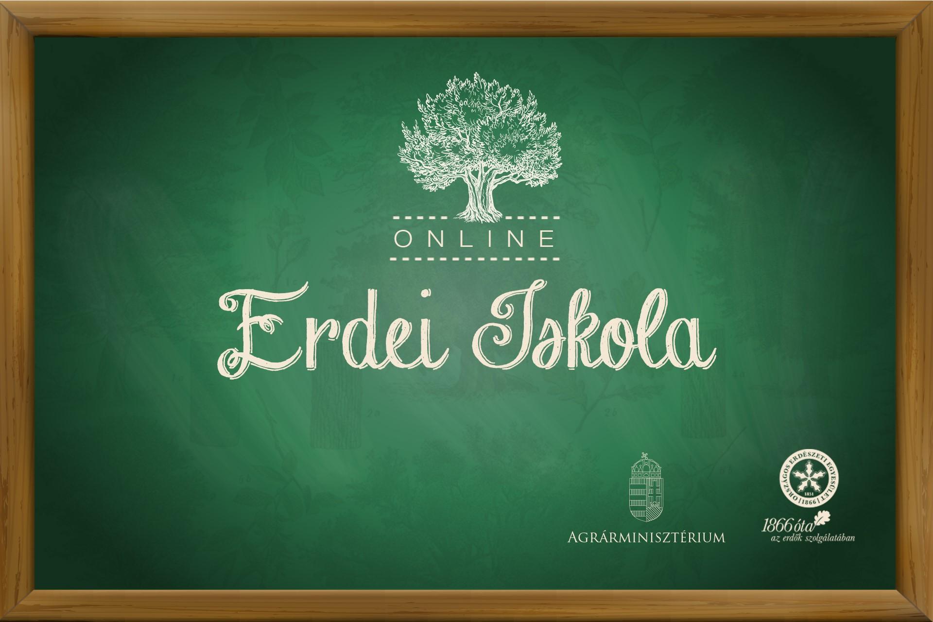 Online erdei iskola sorozat indul a Madarak és fák napján
