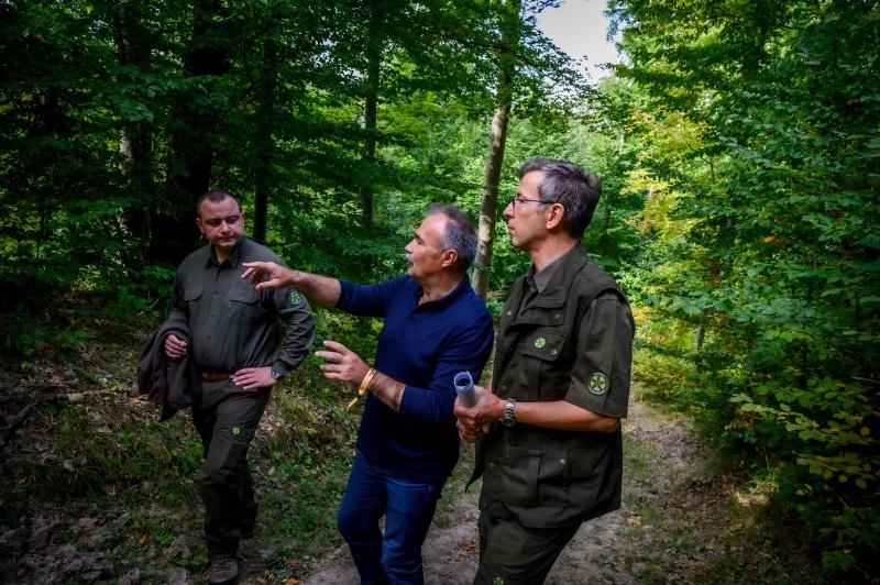 A magyar erdők az emberek egészségét szolgálják