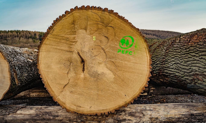Iparifa árverés Alsó-Ausztriában - erdőgazdálkodás, értékbecslés, faanyagvásárlás 2020-ban