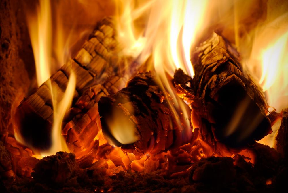 A jó minőségű tűzifa használatával klímavédelmi célokat is elérhetünk