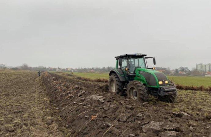 Két és fél hektár erdőt telepít a VADEX Zrt. Székesfehérváron