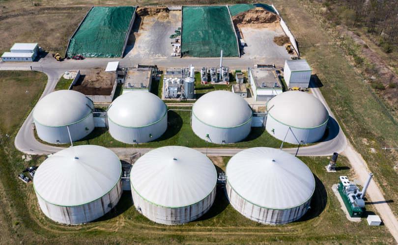 3,2 millió tonna biomasszát használtak fel energetikai célra 2019-ben Magyarországon