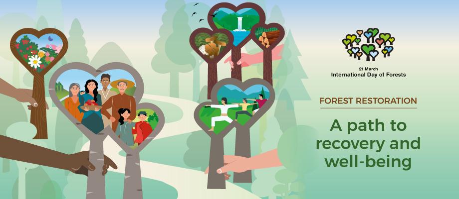 Nincs jövő erdő nélkül - közeleg az Erdők Világnapja 2021!