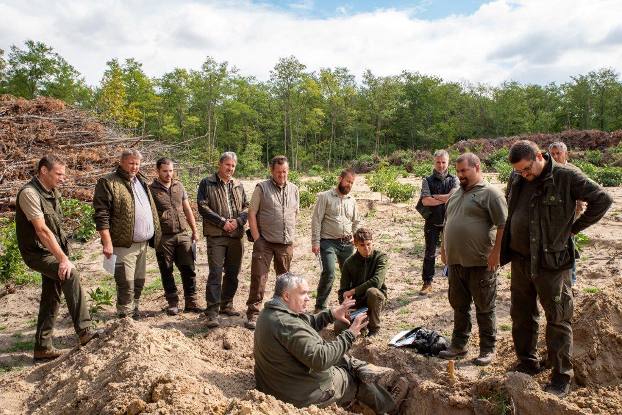 Erdőgazdálkodás határtermőhelyen - erdészet szakmai napot rendezett a Gyulaj Zrt. a klímaváltozásról