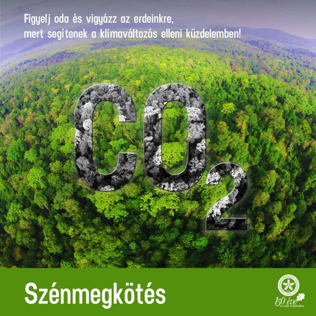 Az Országos Erdészeti Egyesülettel is egyeztetett az ITM a hazai klímaügyek terén