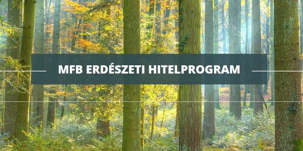 Erdészeti Hitelprogramot indít a Magyar Fejlesztési Bank