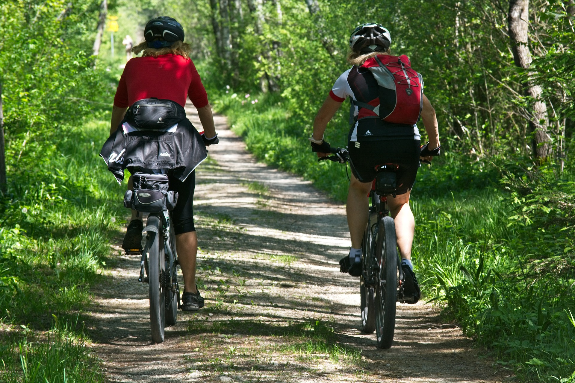 Az Év Erdei Kerékpárútja - az OEE Erdőfeltárási Szakosztály pályázata - Határidő: Szeptember 12!