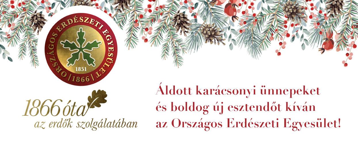 Áldott karácsonyt, meghitt ünnepeket és békés, boldog új esztendőt!
