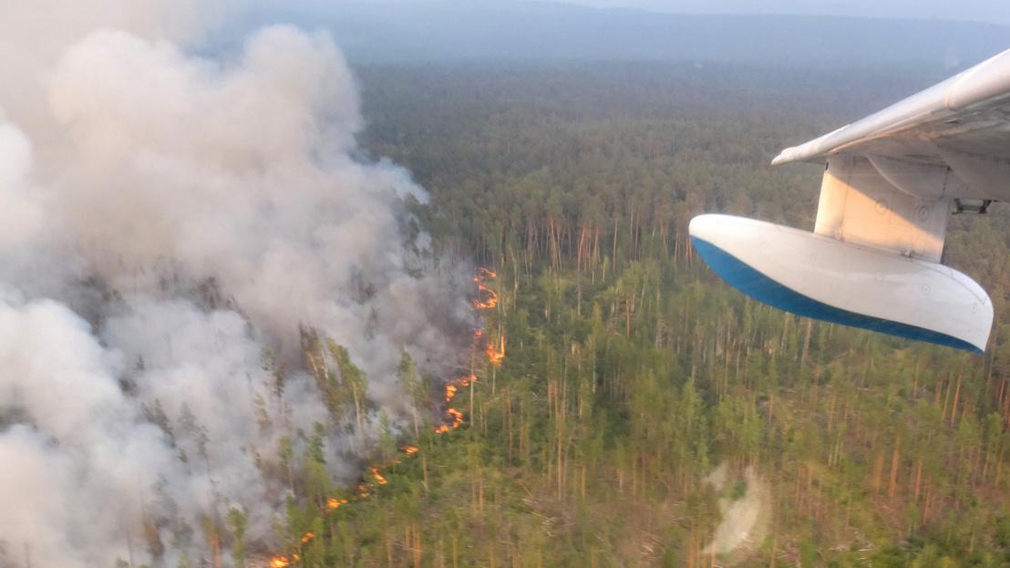 Szibériában 753 ezer hektárnyi erdőtüzet oltott el az orosz légierő