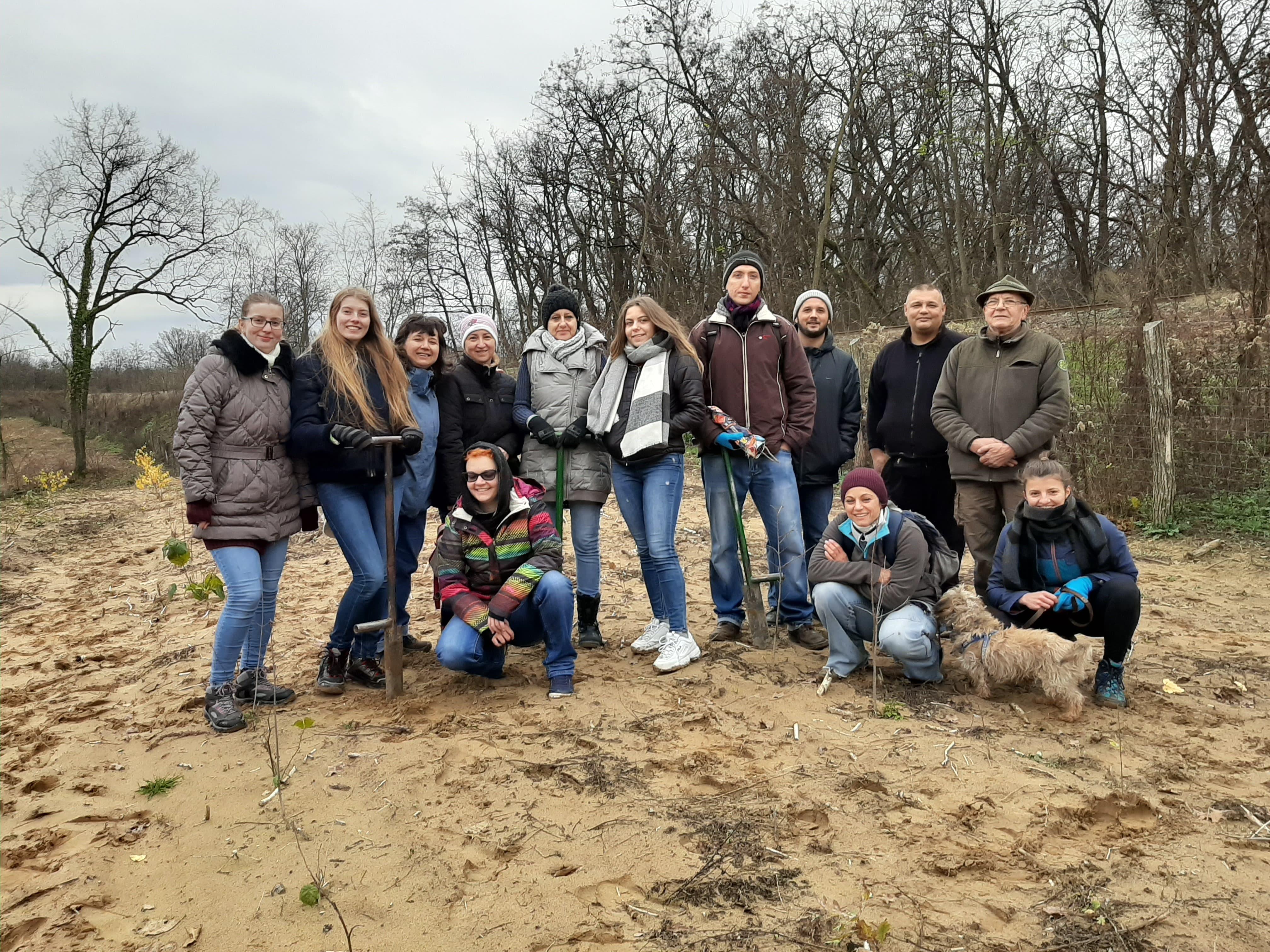 Önkéntesek ültettek facsemetéket a Sóstói-erdőben