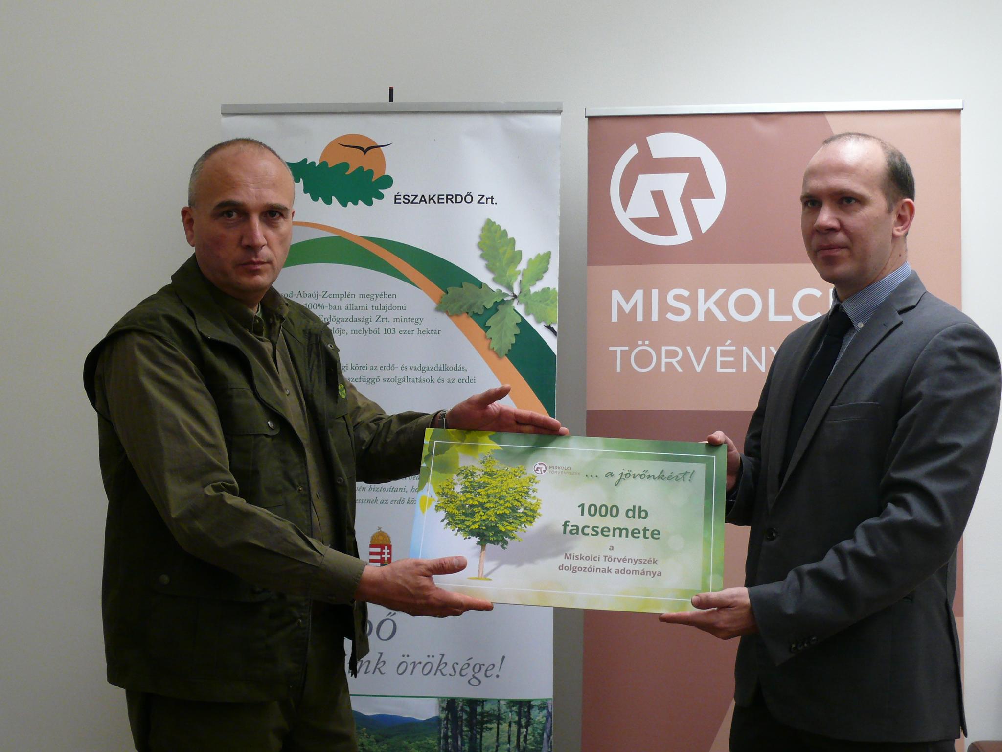 A Miskolci Törvényszék is segíti az erdősítést
