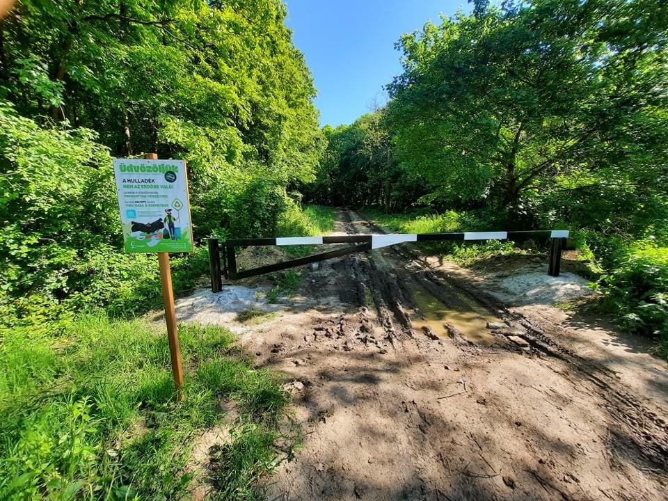 Megtisztult az EGERERDŐ Zrt. kezelésében lévő állami erdőterület