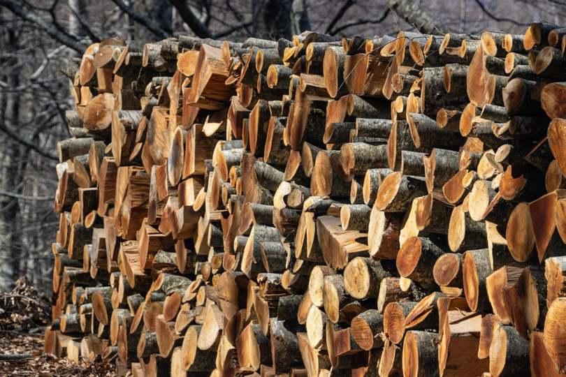 Árösszehasonlító rendszerrel segíti a tűzifavásárlást a NÉBIH