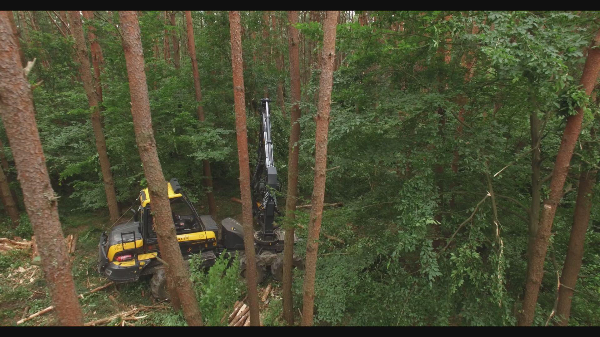 Új, nagy teljesítményű fakitermelő gépek álltak munkába a Zalaerdő Zrt.-nél - videó!